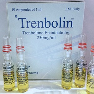 buy Trenbolone enanthate 10 ampoules (250mg/ml)